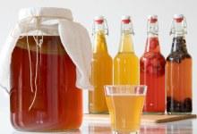 Kombucha: bebida probiótica que emagrece e estimula o metabolismo