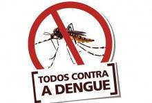 Cuidados que podem evitar proliferação do mosquito da dengue e principais sintomas